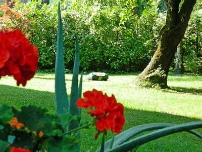 Tosaerba elettrico il robot da giardino
